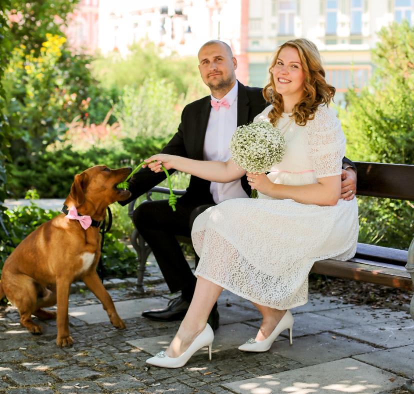 pes svatba