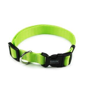neon-zelene